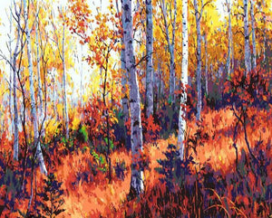Autumn Woods Paint by Numbers