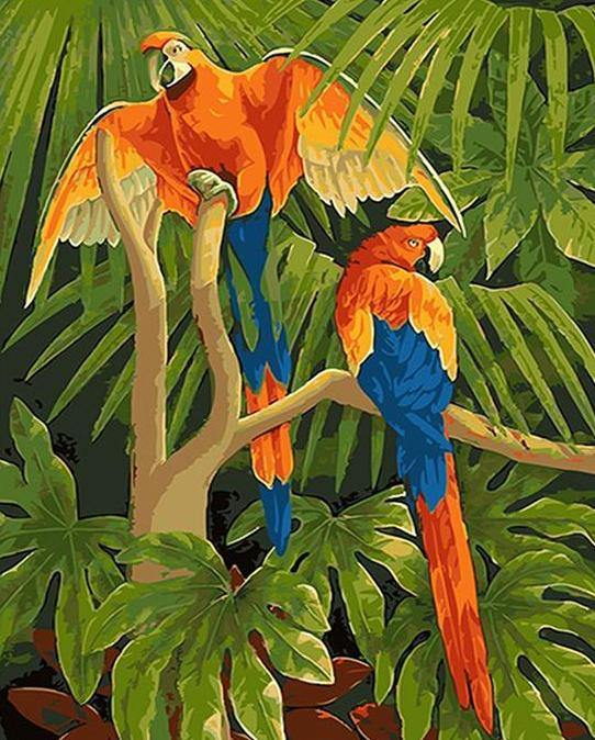 Parrots Pair Paint by Numbers