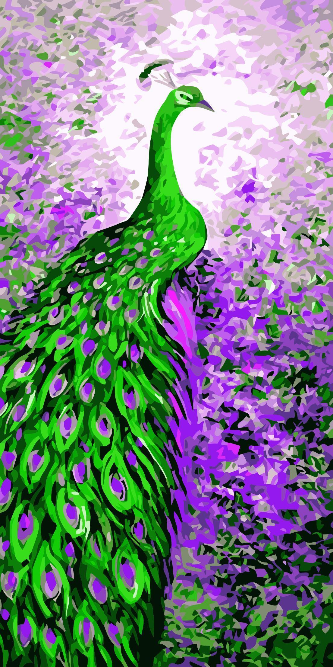 Beautiful Peacock Paint by Numbers