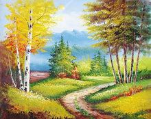 Load image into Gallery viewer, Beautiful Trees Landscape Paint by Numbers