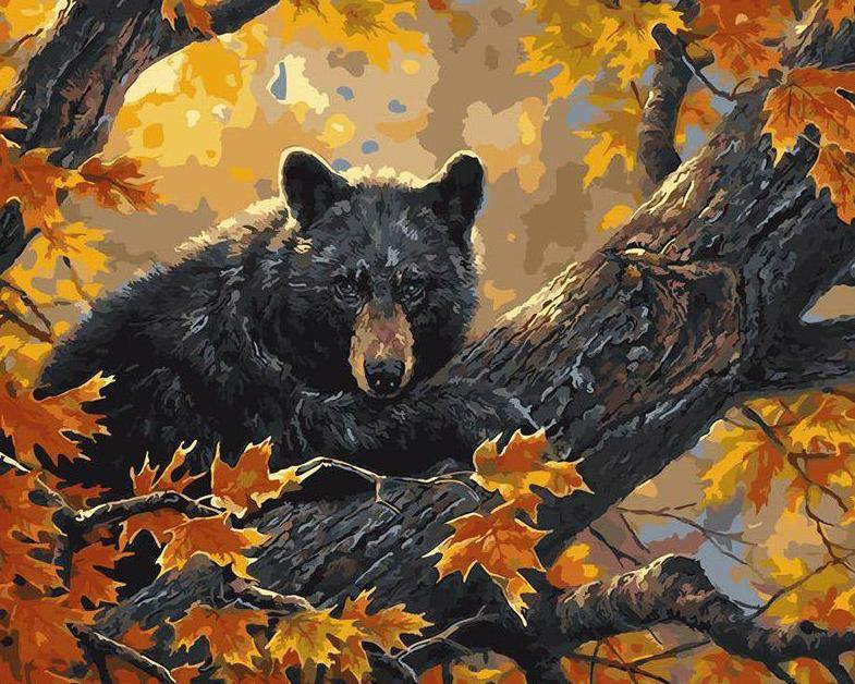 Bear on Tree Paint by Numbers