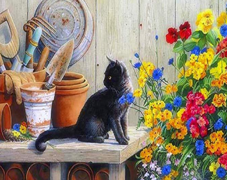Black Cat & Flowers Paint by Numbers