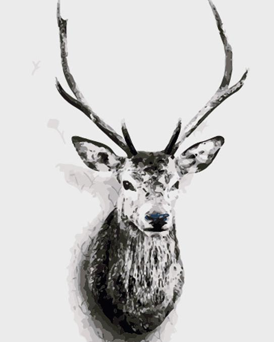 Black & White Stag Paint by Numbers