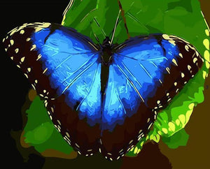 Blue Butterfly Paint by Numbers