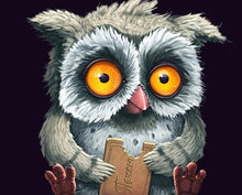 Load image into Gallery viewer, Cartoon Owl Paint by Numbers