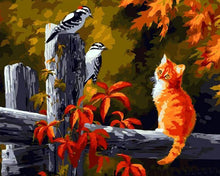 Load image into Gallery viewer, Starring Cat Paint by Numbers