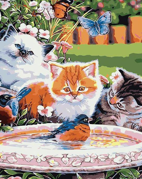 Cats & Birds Painting by Numbers
