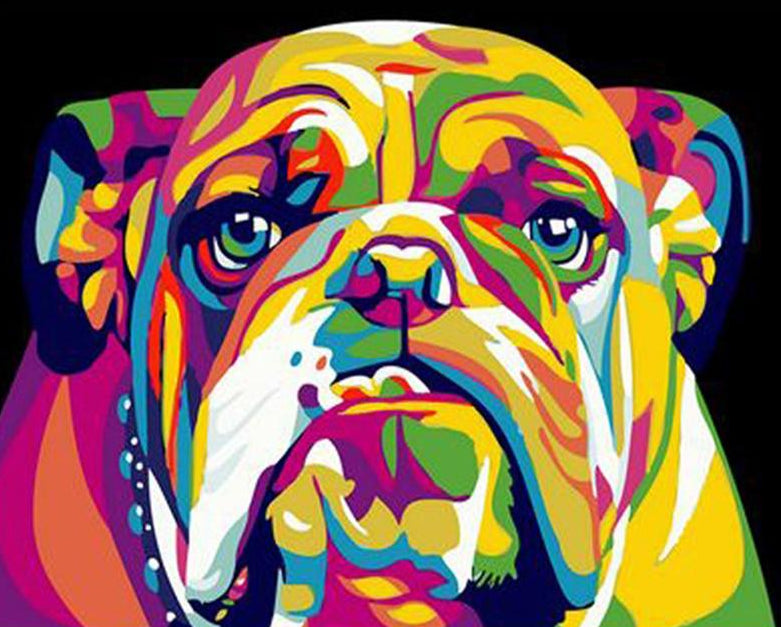 Colorful Bulldog Paint by Numbers