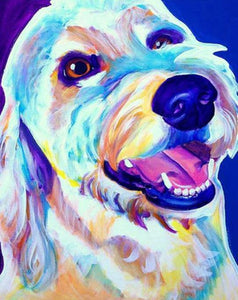 Golden doodle Paint by Numbers