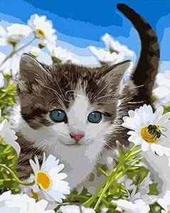 Cat & Daisies Paint by Numbers