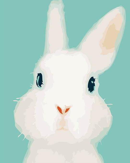White Bunny Paint by Numbers