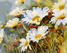 Load image into Gallery viewer, Daisies Paint by Numbers Kit