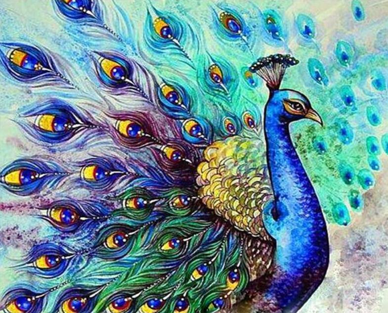 Dancing Peacock Paint by Numbers