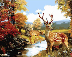 Deer Paint by Numbers Kit
