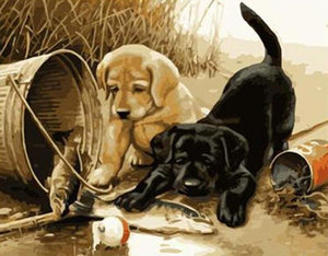 Dogs & Fish Painting by Numbers