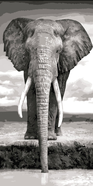 Elephant Painting by Numbers