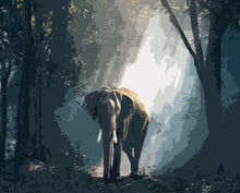 Load image into Gallery viewer, Elephant in the Forest Painting Kit