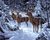 Elk in the Snow Paint by Numbers