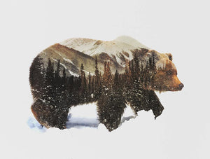 Fantasy Grizzly Bear Paint by Numbers