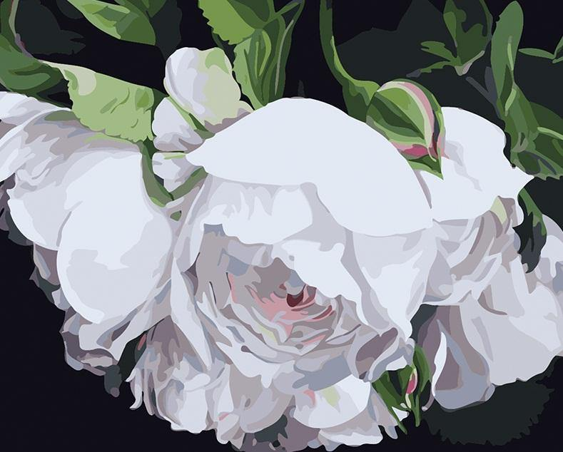 Gorgeous Floral Art Paint by Numbers