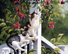 Load image into Gallery viewer, Cats Pair Paint by Numbers