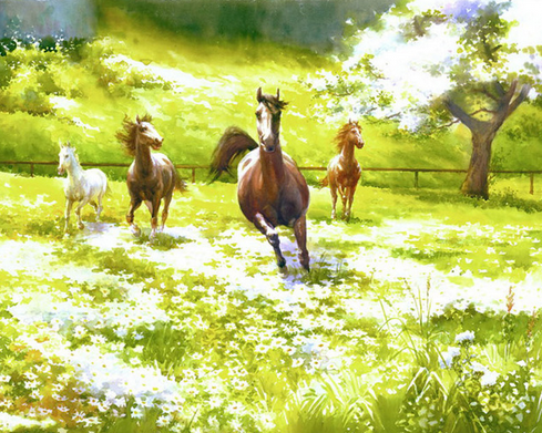 Horses in Meadows Paint by Numbers