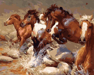 Horses Running Paint by Numbers