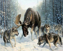 Load image into Gallery viewer, Moose & Wolves Paint by Numbers