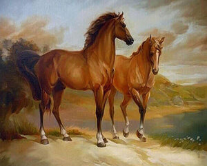 Brown Horses Paint by Numbers