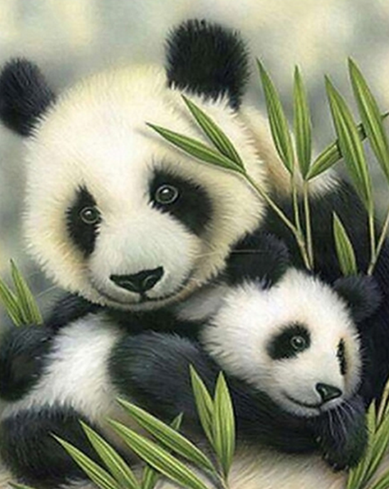 Panda with Baby Paint by Numbers