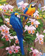 Load image into Gallery viewer, Parrots Paint by Numbers