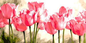 Pink Tulips Paint by Numbers