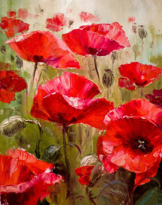 Poppy Flowers Field Paint by Numbers