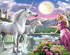 Princess & Unicorns Paint by Numbers