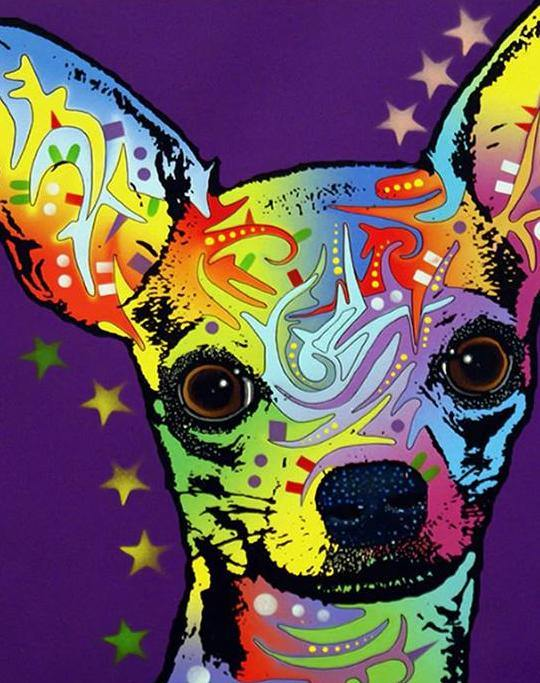 Psychedelic Chihuahua Paint by Numbers
