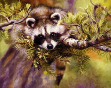Load image into Gallery viewer, Raccoon Paint by Numbers Kit