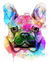 French Bulldog Paint by Numbers