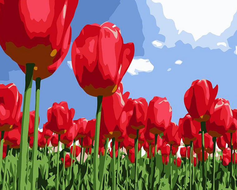 Red Tulips Field Paint by Numbers