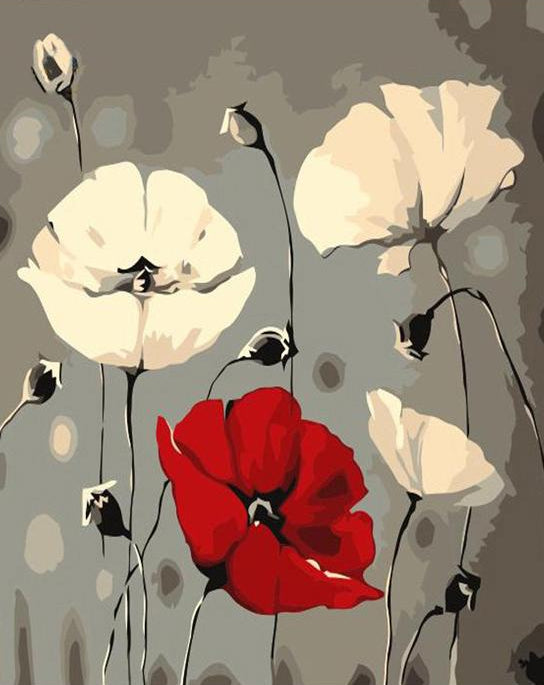 Red & White Poppy Paint by Numbers