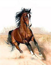 Load image into Gallery viewer,  Brown Horse Paint by Numbers