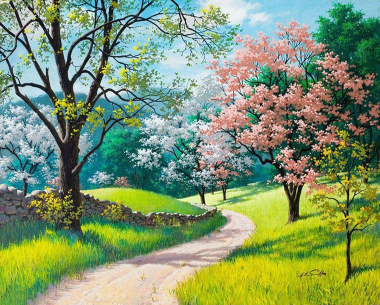 Spring Trees & Pathway Scenery
