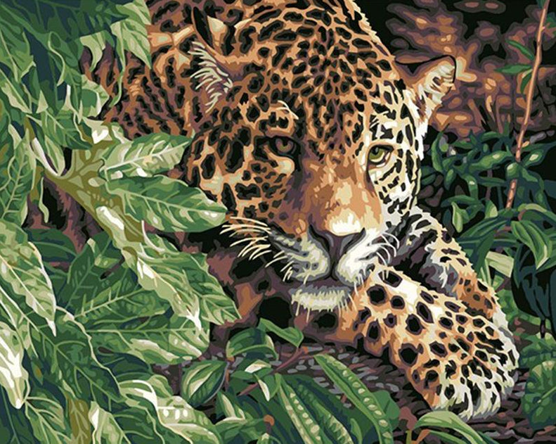 Leopard Paint by Numbers Kit