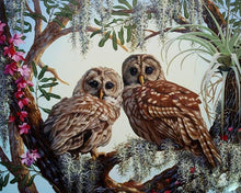 Load image into Gallery viewer, Stunning Owls Pair Paint by Numbers