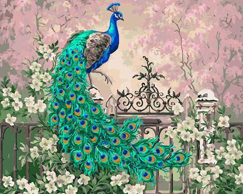 Peacock & Flowers Paint by Numbers
