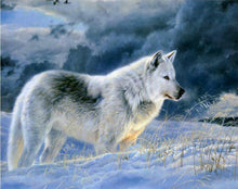 Load image into Gallery viewer, Stunning Snow Wolf Paint by Numbers