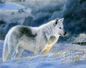 Stunning Snow Wolf Paint by Numbers