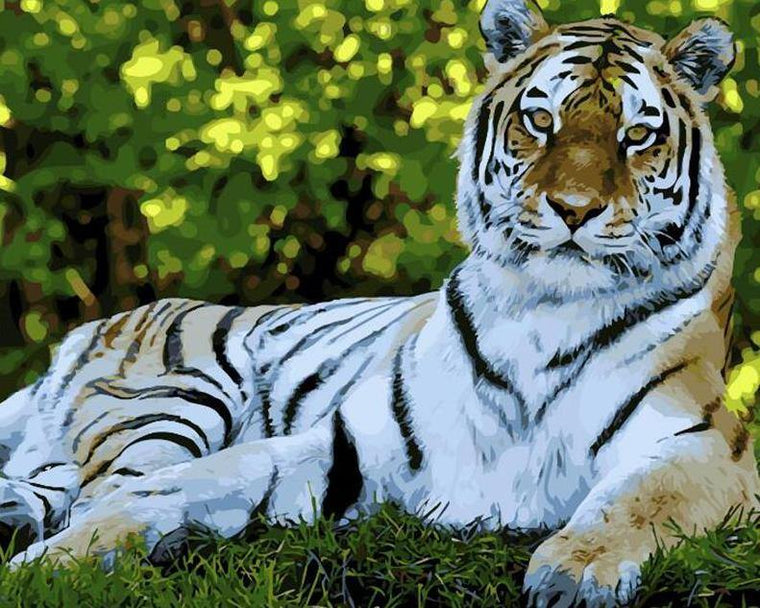 Stunning Tiger Paint by Numbers