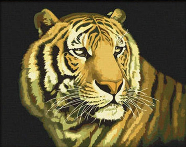 Stunning Tiger Stare Paint by Numbers