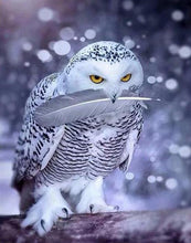 Load image into Gallery viewer, Stunning White Owl Painting by Numbers