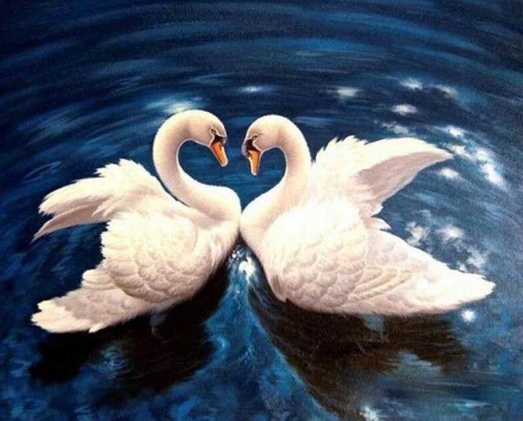 Swans Couple Painting by Numbers
